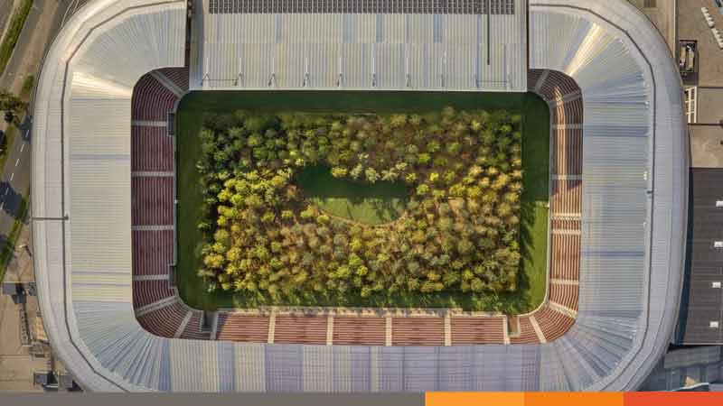'পরিবেশ বাঁচাও', ফুটবল স্টেডিয়ামে গাছপালার আহ্বান