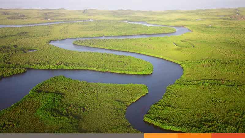 বুনোপ্রাণীর দেশ গাম্বিয়া